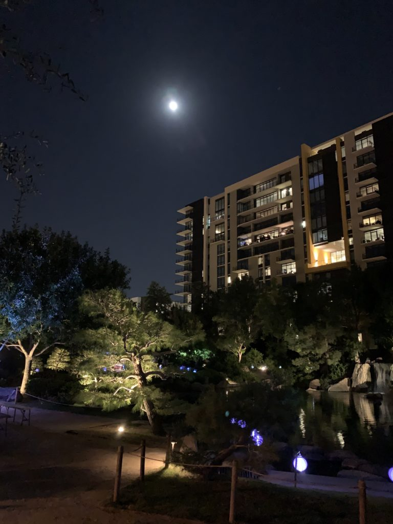 The big beautiful moon over the koi pond