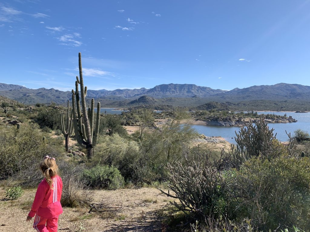 Homeschool field trip Scottsdale
